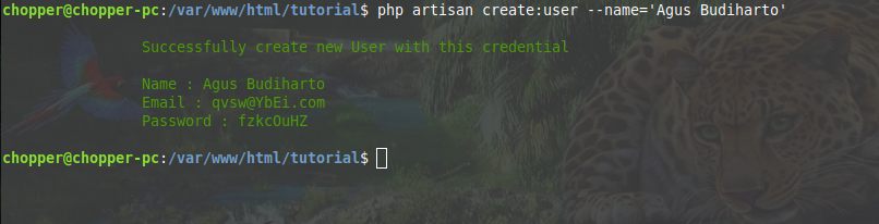 Execute an artisan command to create random user with specified name in laravel