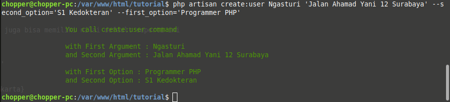 An example of how to call a new artisan command with argument and option